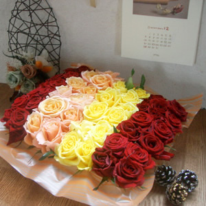 rosespring